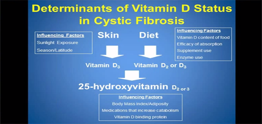 Improving Clinical Outcomes in Cystic Fibrosis with Vitamin D