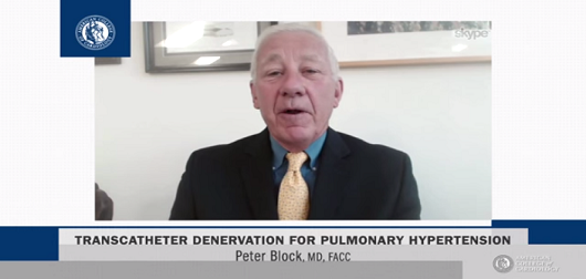 Transcatheter Denervation for Pulmonary Hypertension